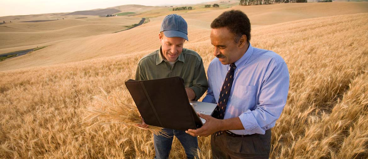 Analyze farm data to improve decision making, reduce costs, improve quality and optimize the supply chain